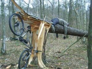 fiets-tegen-boom