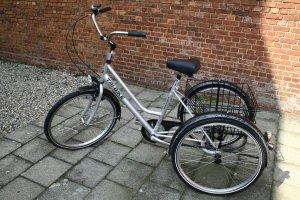 driewieler-volwassenen003